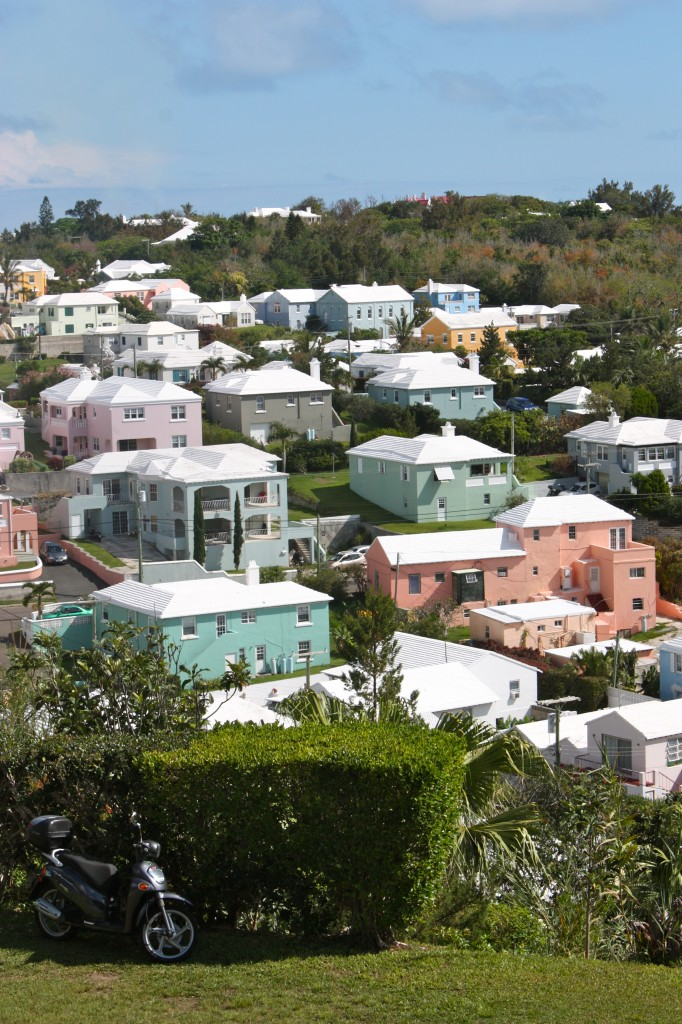 paster colored houses with white roofs in Bermuda
